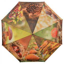 Őszi esernyő